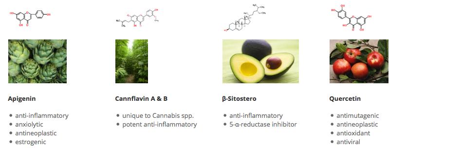 cialis hashish amoxicilline allergie test
