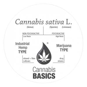 Cannabis sativa L. Two types; Industrial Hemp and Marijuana