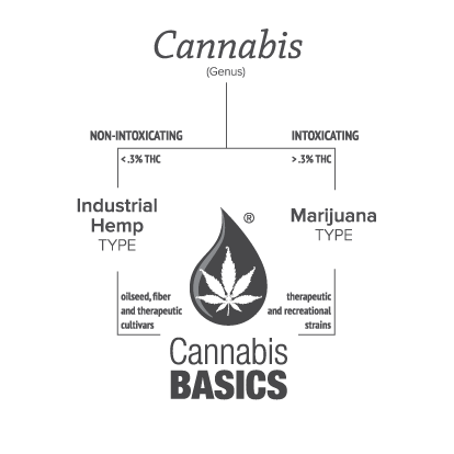 Diagram of the intoxicating and non-intoxicating types of cannabis.